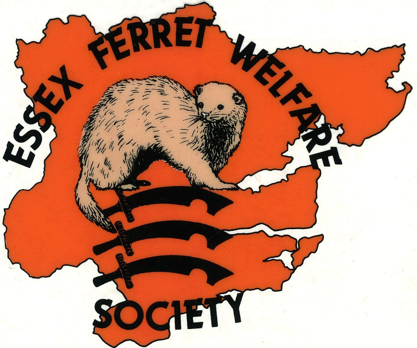 Essex Ferret Welfare Logo